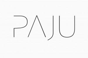 bedow-paju-05
